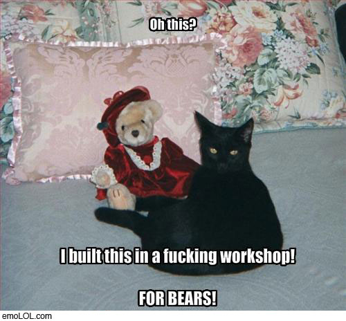 emo-animal-pictures-cat-bear-workshop