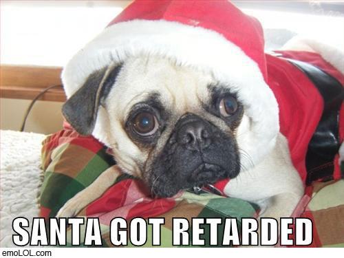 emo-animal-pictures-retarded-santa-pug