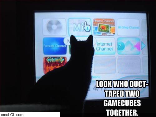 emo-animal-pictures-wii-cat-duct-tape