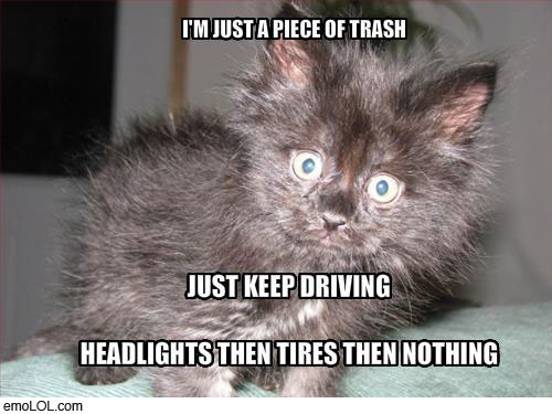 emo-animal-pictures-headlights-tires-nothing